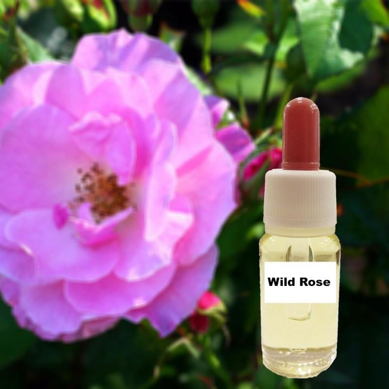 Άγριο τριαντάφυλλο (15 ml)